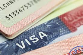 What are the requirements to apply for the U Visa?